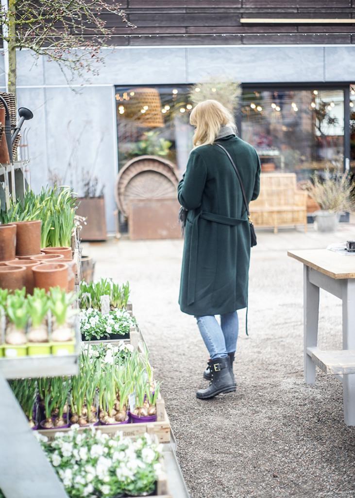 Zetas trädgård, handelsträdgård, trädgård, uteväxter